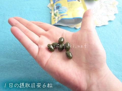 4小林製薬オメガ3_目安.jpg